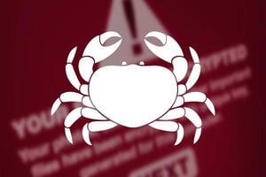 Crab virus