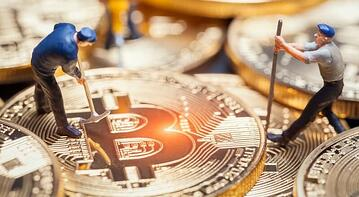 Cryptocurrency8