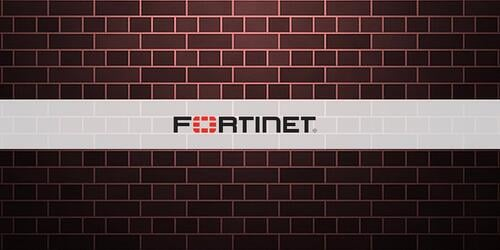 Fortinet2-1