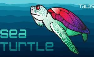 Sea Turtle-1