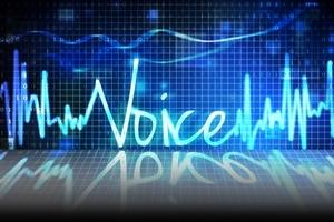 voice fraud