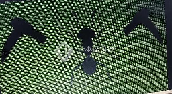 Вымогатель hAnt атакует майнинговые устройства в Китае