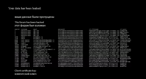 Крупный русскоязычный хакерский форум Maza стал жертвой утечки данных