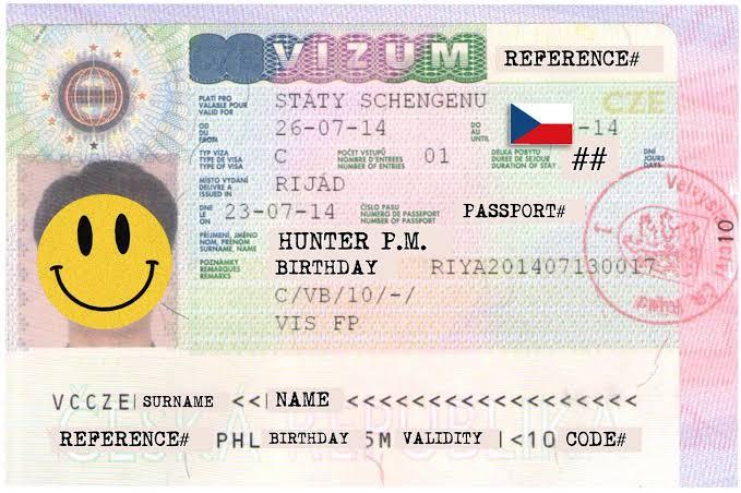 Двое россиян 5 лет контролировали выдачу чешских виз гражданам Вьетнама