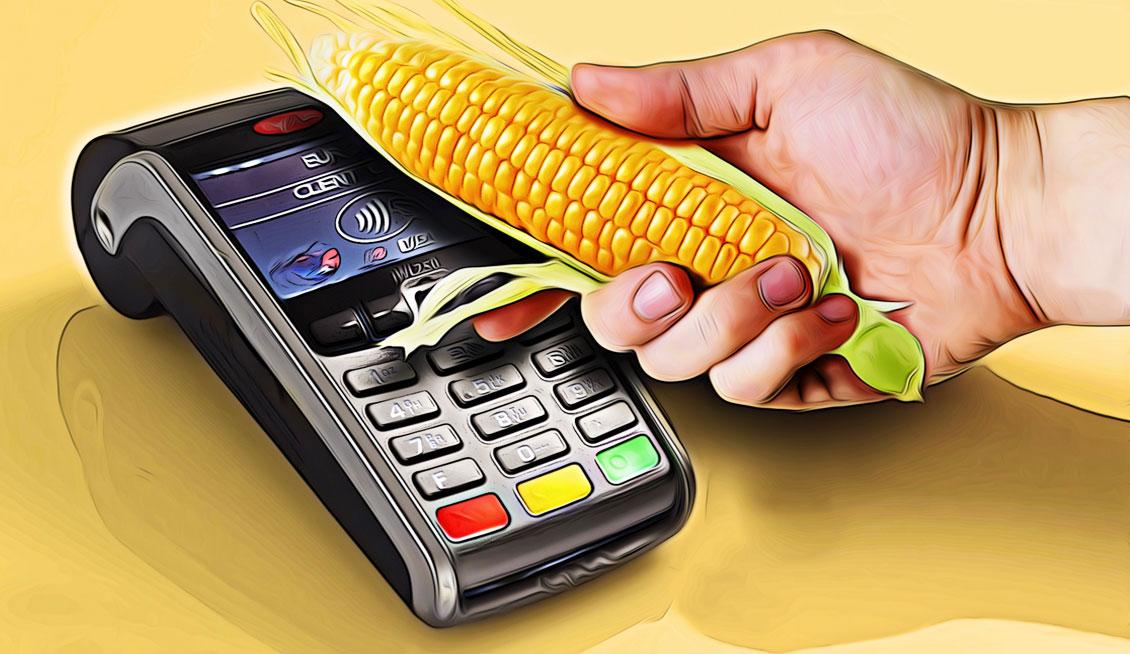 Злоумышленники обокрали владельцев карт «Кукуруза»