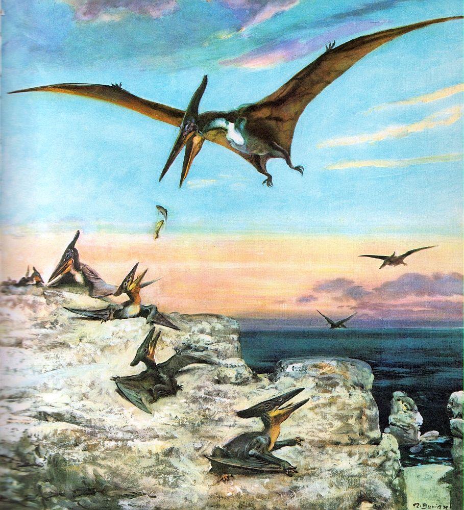 Белорусские госструктуры атакует троян Pteranodon