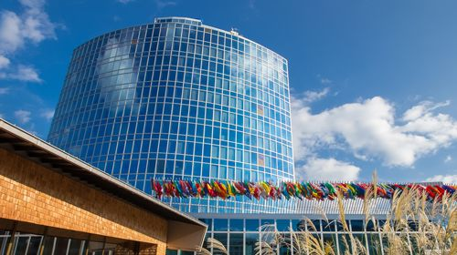 Роскомнадзор внес в международную базу данных пиратских ресурсовболее 1700 российских сайтов