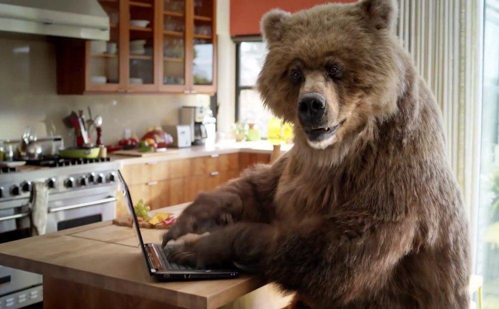 APT Berserk Bear атаковала десятки правительственных сетей в США