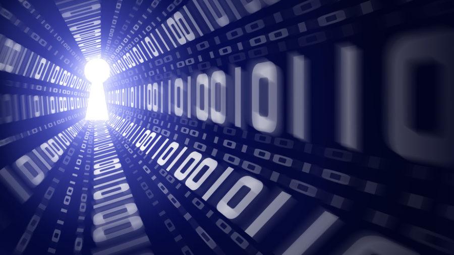 В сети продают базу данных