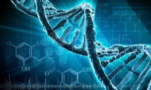Берегите свою ДНК смолоду